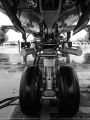 Hiding From The Rain (Maurice van Gestel) Tags: challenge52 challenge 52 52weeks aeroflot russian airline aviation schiphol airport aircraft airplane planes