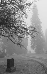 Foggy Morning (Rainfire Photography) Tags: cemetery pickering headstone grave fog mist peaceful path nikon