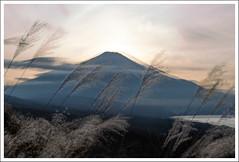 Okuniwa 10.18--14 (Joanna Oh) Tags: mtfuji panoramadai sunset doubleexposure me