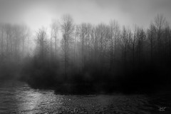 Morning light (cdnfish) Tags: cowichanvalleyf britishcolumbia canada ca cowichanriver bc vancouverisland sony sonya7m2 a7m2 rocks rural river riverbank tree trees blackandwhite bw landscape landscapephotography fog