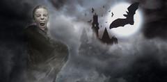 Dracula (Yannick Deloffre) Tags: castle computer bat digitally draculas vampire flying full generated halloween graveyard graphic dracula digital haunted leaves cloudy spooky horror grave scary cloud bats dirt grey moon ireland