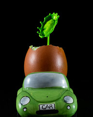Oh, that egg's off (susie2778) Tags: olympus olympusm60mmf28macro omdem1mkii splashartkit2 splash egg eggcup eggshell car vw greenbeetle flash studio