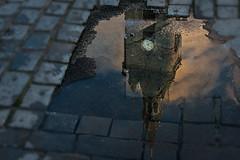 Beffroi de Tournai (musette thierry) Tags: beffroi tournai musette reflets reflex nikon visite falowme belgique hainaut thierry flaque eau pluie unesco