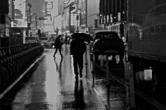 Challenging the rain (Capitancapitan) Tags: