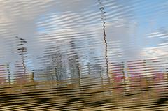 Vent d'automne (Corinne Queme) Tags: automne bordsdemarne maisonsalfort reflet abstrait vent risée