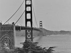 The Golden Gate Bridge in Black and White (Anton Shomali - Thank you for over 2 million views) Tags: 49rs california thebay sf goldenbridge bridge sunset san francisco st fran bay beach red sun water cross car cars people city area metal nature blue night light lights park parks bird lake river orange color beautiful beauty greatphotographers skyline golden gate fog panasonic dmcfz70 shadow iron bright window dusk ship art cloud summer town sail presidio national black white blackandwhite bw
