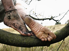 Tree climb (Barefoot Adventurer) Tags: barefoot barefooting barefooter barefoothiking barefeet barefooted baresoles barfuss strongfeet tree hiking healthyfeet hardsoles heelcracks treestump toughsoles toes texture tough wrinkledsoles muddysoles muddyfeet muddy moorland callousedsoles connected earthsoles earthing earthstainedsoles earth toepoint toughening leathertoughsoles leathersoles livingleather naturalsoles naturallytough thicksoles stretching strongarch anklet arches autumnbarefooting autumnsoles ankles