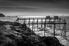 Carrelets en BW (Fabien Georget (fg photographe)) Tags: saintpalaissurmer vague wave sun water rocks bw noiretblan landscape paysage sky ayezloeil beautifulearth bigfave canoneos5d canon elitephotography elmundopormontera eos fabiengeorget fabien fgphotographe flickr flickrdepot flickrunited georget geotagged flickunited longue mordudephoto nature paysages perfectphotograph perfectpictures wondersofnature wonders supershot supershotaward theworldthroughmyeyes shot photography photo greatphotographer granit seascape sunset carrelet