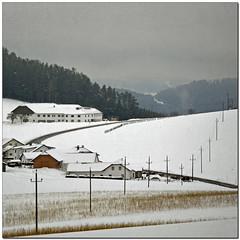 Hello, cold days (pixel_unikat) Tags: mühlviertel austria landscape winter snow village farmhouse street electricity white field ilivehere hill valley