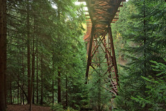 Approaching Wildspeed (PhotonenBlende) Tags: trees forest bridge steel railway green wood landscape outdoor fabolous enchanted rust oremountains erzgebirge fine art abandoned lost decay wald holz baum brücke
