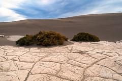 The Floor of the Dunes (TierraCosmos) Tags: mudtiles dunes sanddunes mesquiteflat landscape deathvalley deathvalleynationalpark desert california