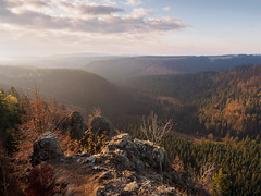 View from the Hahnekleeklippen | Nationalpark Harz, Germany (wiscmic) Tags: autumn olympus deutschland harznationalpark herbst nature germany olympusomdem10mkii berg wald natur bäume trees baum tree morning forest em10mkii wälder landscape landschaft berge nationalpark harz olympusomd braunlage niedersachsen de hahnekleeklippen mft microfourthirds