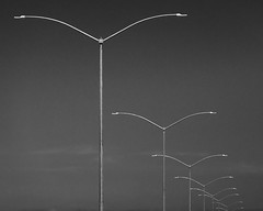20180826_metal_birds_001 (petamini_pix) Tags: light lighting lights perspective receding repeating repeat blackandwhite blackwhite bw monochrome grayscale