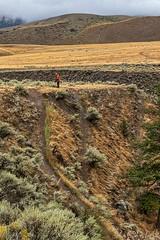 You Take The High Road ... (gecko47) Tags: landscape junctionsheeprangeprovincialpark cariboo wildlifereserve rangeland bighornsheep paths tracks steep lookout photographer britishcolumbia grassland mist hills gullies