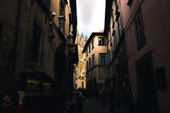IMG_2012 (vin.ricciardelli) Tags: cattedrale orvieto statue