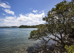 Te Rāwhiti (fantommst) Tags: lisaridings fantommst terāwhiti rāwhiti kaingahoa bay ocean sea coast bayofislands northland nz newzealand waterscape landscape rawhiti