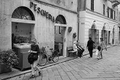 Finale Ligure, Liguria (fabiolug) Tags: people street streetphotography woman women bike bicycle shop sign pescheria fishmonger building buildings finaleligure finale liguria ligury italy italia leicammonochrom mmonochrom monochrom leicamonochrom leica leicam rangefinder blackandwhite blackwhite bw monochrome biancoenero voigtlandernoktonclassic35mmf14 voigtlandernokton35mmf14 voigtlander35mmf14 35mm voigtlander