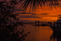 Saturday Morning (mimsjodi) Tags: sunrise sky amaxbrewerbridge trees palms clouds water dawn titusvillefl indianriverlagoon