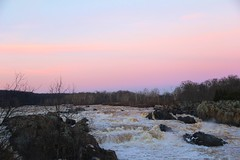 Great Falls at day's end (seventh_sense) Tags: outdoor outdoors nature natural wilderness wildlife potomac river maryland virginia great falls watercourse water landscape creek shore coast riverbed waterfall cascade rapid rapids churning waters current scenic scenery view sky tree trees horizon autumn fall colors sunset pink hazy haze winter branches rocky rocks cliff cliffs