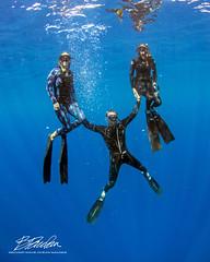 Freedive training (bodiver) Tags: hawaii honaunau freediving freedivers peopleunderwater ambientlight wideangle blue ocean apnea
