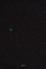 Coment_46P_Wirtanen (Anurag Daware) Tags: astrophotography nikon d850 natgeo comet nightphotography longexposure stars