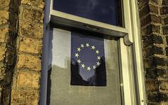 Hot sun on gold stars (Libby Hall Dog Photo) Tags: eu euflag europeanunionflag