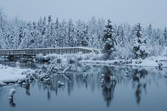 Eagle River Nature Center (akdjtyson) Tags: alaska eagle river snow tree reflection winter hiking bridge landscape