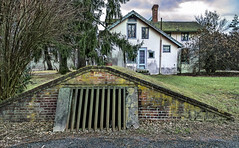 Down in the root cellar (Jersey JJ) Tags: root cellar ringwood manor property lucis pro nj new jersey