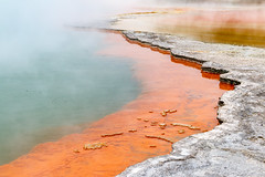 IMG_5845.jpg (niklasdd) Tags: oceania waiotapu newzealand thermalwonderland sommerurlaub18 neuseeland northisland flickr ozeanien reporoa waikatoregion nz