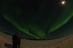 March Madness-142 (juan_guthrie) Tags: yellowknife nwt northernlights
