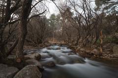La Pedriza. (Amparo Hervella) Tags: lapedriza comunidaddemadrid españa spain paisaje río agua árbol naturaleza roca largaexposición d7000 nikon nikond7000