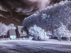 Infrared V (betadecay2000) Tags: infrared infrarot bäume baum trees tree sun sonne sol sky himmel ir fotografie medion imgae bild germany duitsland niemcy deutschland street road strase dülmen münsterland park wald schnee wasser