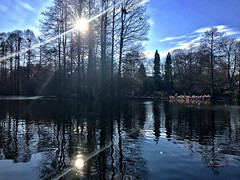 double suns (m_big_b) Tags: winter lake luisenpark germany mannheim
