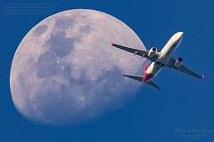 VH-VZR Qantas Boeing 737-838 'Coral Bay' crosses the Waxing Gibbous Moon 80.2%. (ePixel Aerospace) Tags: vhvzr qantas boeing737838 boeing boeing737 coralbay waxinggibbousmoon moon aircraft brisbane australia flight qf597