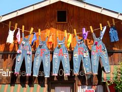 Let's all go to the Fair. (Vicki LW) Tags: fair farm clothesline overalls denim letters 7dos crossings colourful thursday