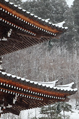Two stories (Elios.k) Tags: vertical outdoors nopeople pagoda structure woodenpagoda fivestorey roof corner wooden architecture japanese traditional building snow snowing snowstorm winter cold coveredinsnow frozen freezing colour color trees forest buddhism religion belief shingonbuddhism sacredsite japaneseculture tree snowfalling weather buddhisttemple dof depthoffield focusonforeground backgroundblur seiryūji shingon shinto showadaibutsu travel travelling december2017 vacation canon 5dmkii photography aomori aomoriprefecture tōhokuregion tohoku honsu asia japan