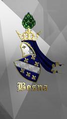 kraljevinabosna2 (AntiDayton) Tags: bosna bih bosnaihercegovina bhf rbihrepublikabih republikabih rbih plbih kotromanići ljiljani