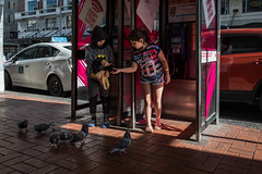 Small Fry (yotung) Tags: 5d4 7259 auckland feeding frenchfries kidsmcdonalds newzealand pigeons