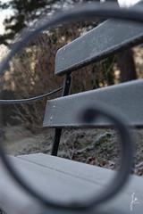 Frost (jannaheli) Tags: suomi finland helsinki laajasalo talvi winter marraskuu november nikond7200 nature luonto luontovalokuvaus naturephotography naturetherapy luontoterapia outdoor outside ulkona rauha peace frost halla huurre