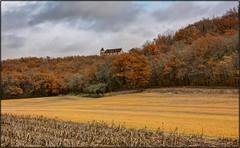 Couleurs d'automne au Château de Léo......en pays Lotois (lo46) Tags: france midipyrénées occitanie lot departementdulot gourdon automne couleurs château léoferré pechrigal campagne paysage canon60d lo46