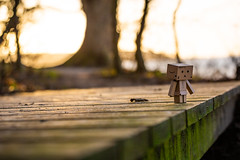 4 (sebastianba95) Tags: canon 5dm3 5d 5dmarkiii tamron2470 tamron2470g2 denmark danmark dk japan japanese danboard danbo nature bokeh figure cute colors amazon adventure