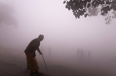 Foggy morning (irrfanazam) Tags: foggy morning delhi yamuna ghat india travel flickrtravelaward fogg river indian photography street beautiful old man walk winter cold water