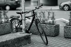 bokeh 2@Bilk, Düsseldorf (Amselchen) Tags: bike bicycle bokeh blur dof depthoffield canon ef85mmf18usm canoneos6dmarkii