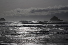 A sea of silver (rozoneill) Tags: bandon beach face rock coquille point river devils kitchen oregon coast trail hiking