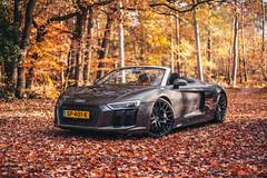 Audi R8 Spyder (JespervdN) Tags: audi r8spyder forrest woods leafs autumn automotive capristo supercar