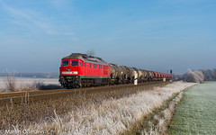 232 528 mit ER 52170 bei Biendorf (Emotion-Train) Tags: 232528 cargo