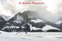 """Lac Noir (""""officiellement ouvert"""") (Stefano Procenzano) Tags: schwarzsee fr svizzera ch cantonfribourg lacnoir d600 nikond600 nikon zeissmilvus50mmf14distagon zeiss milvus1450 zf2 milvus 50mm f14 50mmf14 manualfocuslens mflenses nature lac lago lake"""
