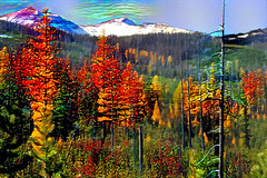 An Eastern Oregon Dream (Eclectic Jack) Tags: eastern oregon trip october 2018 enterprise rural farm autumn fall wallowa mountains post process processed processing topten