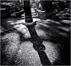 Fotografía Estenopeica (Pinhole Photography) (Black and White Fine Art) Tags: fotografiaestenopeica pinholephotography pinhole estenopo estenopeica stenopeika sténopé camarasinlente camerawithoutlens sanjuan oldsanjuan viejosanjuan puertorico bn bw kodaktmax400 expirado2008 expired2008