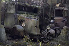 Now i rest (andre govia.) Tags: truck vintage car abandoned andregovia decay decayed derelict decaying dead transport rust rusty crusty